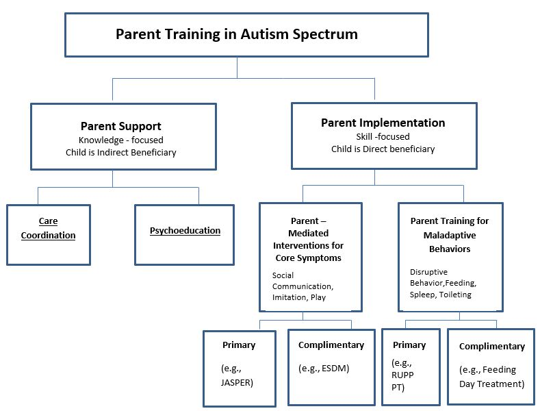 Taxonomy of parent training in autism spectrum disorder